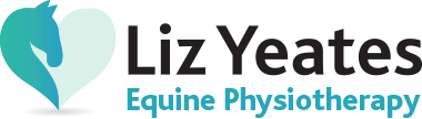 Equine Physiotherapy Logo